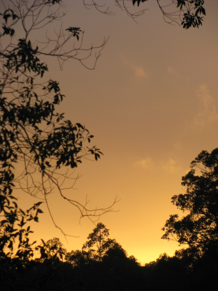 the first golden rays ...