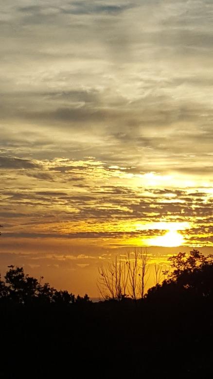 sunrise yelgun 2